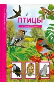 Птицы. Школьный путеводитель