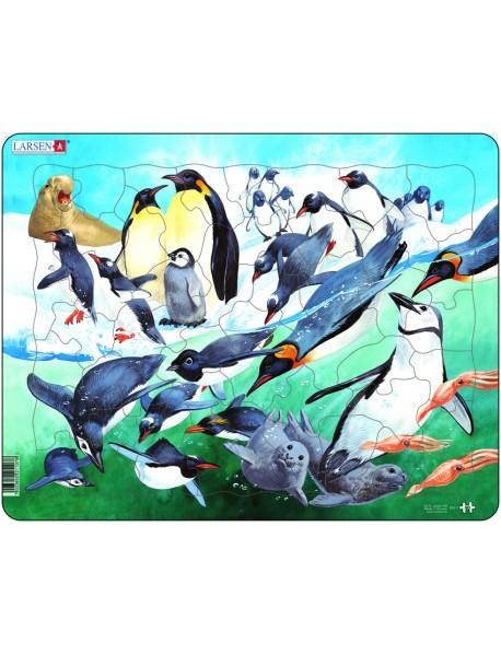 """Пазл """"Пингвины"""", 50 деталей"""