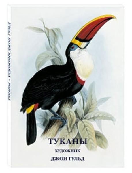 Туканы. Художник Джон Гульд