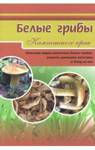 Белые грибы Камчатского края