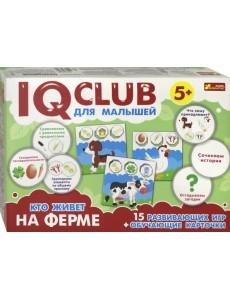 IQ club для малышей