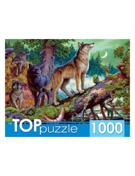 """Пазлы """"Toppuzzle. Волки в ночном лесу"""", 1000 элементов"""