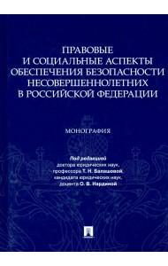 Правовые и социальные аспекты обеспечения безопасности несовершеннолетних в Российской Федерации. Монография