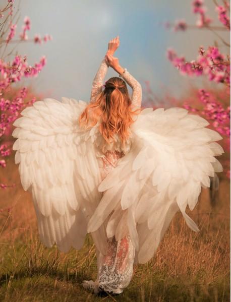 """Холст с красками """"Нежный ангел в цветущем саду"""" (13 цветов)"""